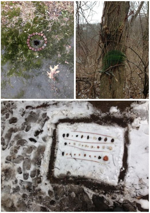 Geo Class, Art in Nature Collage, April 2015